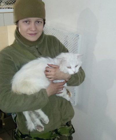 Котик 17 марта (1)